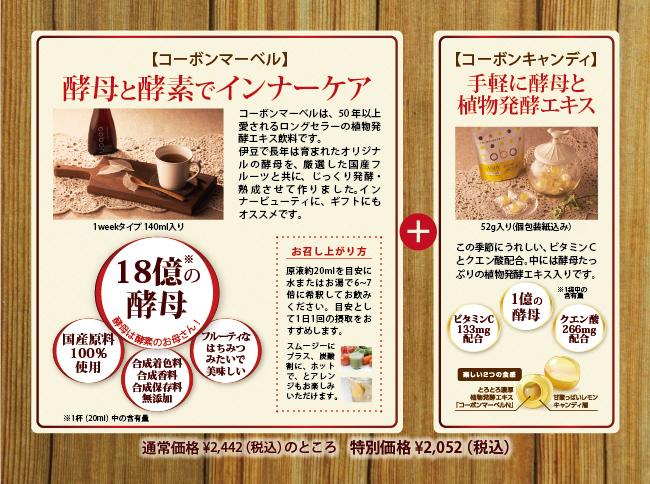 通常価格2,262円(税抜)のところ特別価格1,900円(税抜)